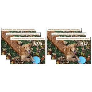 2018 Calendar - 6 pack - with FREE MAGNET