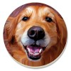 Coaster set without holder - Golden Retriever